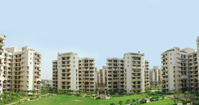 3 bhk in greater noida